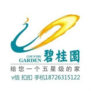 碧桂园房地产vwin德赢官方网站