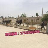 大型鑄銅駱駝銅駱駝工藝品鑄銅駱駝雕塑廠家大型銅駱駝定做;
