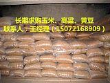 玉米豆粕棉粕麸皮次粉油糠等饲料原料求购