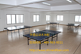 乒乓球球場運動木地板;