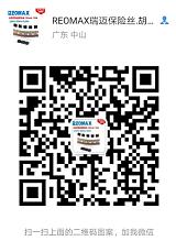 REOMAX品牌MTS/MFS塑封保险丝8*4*7mm 200MA-10A