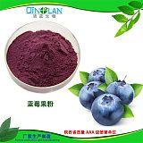 蓝莓果粉 含花青素 蓝莓提取物