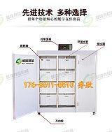 河南郑州盛隆多功能豆芽机价格 豆芽机可以发那些豆芽 豆芽机商用方法