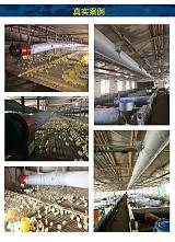煤改电热风机 鸡舍鸭舍热风炉 养殖设备厂家直销 30kw;