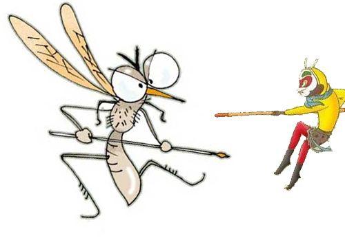 蚊子1.jpg