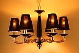 东莞仪普电子有限公司照明灯饰,采用进口芯片节能环保