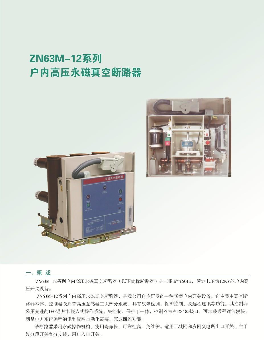 ZN63M-12 1.jpg