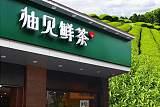 江苏柚见鲜茶加盟多少钱