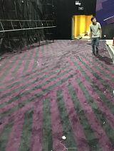 上海电影院地毯 定制防火阻燃羊毛混纺阿克明斯特地毯 价格