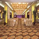 婚礼地毯 厂家批发防火阻燃宾馆酒店餐厅办公室尼龙印花地毯