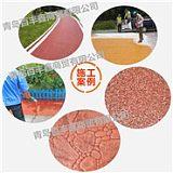 百丰鑫安庆彩色路面改色剂,材料、设计、施工三方完美结合。