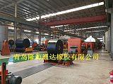 各种规格型号橡胶输送带;