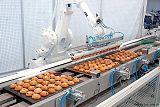 分拣机器人