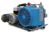原装进口排气量100升/分钟德国宝华空气压缩机;
