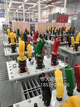 油浸式变压器厂家 河南天晟电气