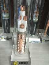 供應河南金水電纜集團生產的BTLY系列