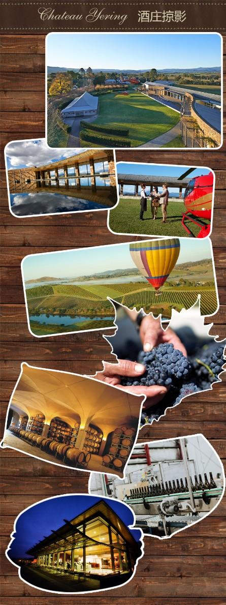 伊伶庄园(CHATEAU YERING)澳洲原瓶进口红酒 西拉干红葡萄酒 750