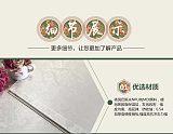 嘉兴集成墙板 护墙板 环保快装室内顶墙装饰材料