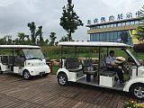 8座简易款电动观光车,环保接待电瓶游览车;