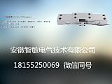安徽智敏轴承座式传感器ZMHBQA;