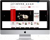 购物商城设计营销推广全能型网站设计;