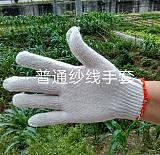 四川省绵阳市盐亭县润东手套厂,普通线手套,A级纱线手套,尼龙线手套