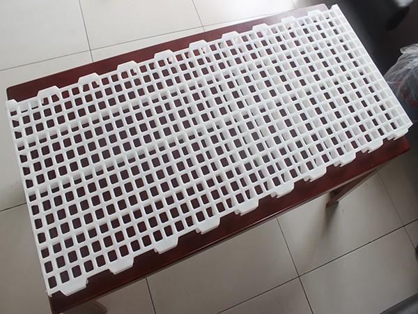 日照宝利塑业塑料漏粪板厂家直销批发