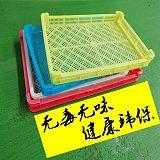 日照寶利塑業單凍器家用倉庫烘干網格盤塑料冰盤冷凍盤;