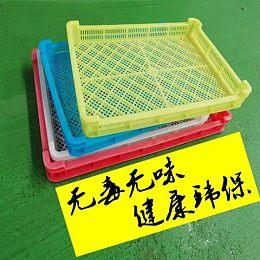 日照宝利塑业单冻器家用仓库烘干网格盘塑料冰盘冷冻盘