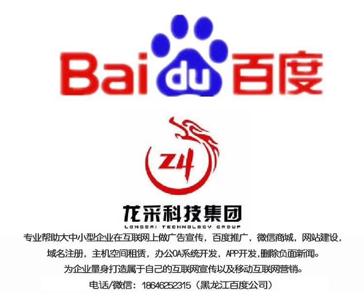 哈尔滨网站推广公司