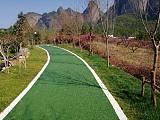 隆安縣 交地 透水路面 彩色透水增強劑 廠家直銷 道路施工