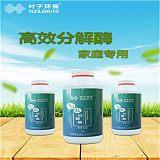 家庭专用套装 叶子环保除醛产品;
