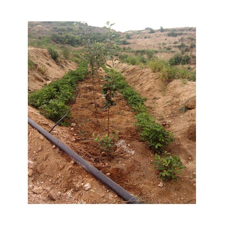 连云港山丘果园灌溉施肥系统安装价钱