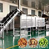 专业制造 炸黄豆烘干机 食品烘干机;