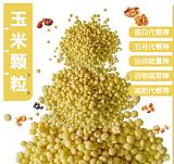 广州赢特能量棒/代餐棒以及固体饮料用 膨化玉米颗粒 玉米粒食品级