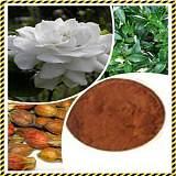 天然植物提取栀子苷栀子提取物;