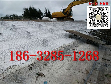 雷诺护垫护坡 专业的雷诺护垫生产厂家