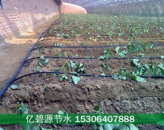 遵义草莓滴灌管件生产批发厂家