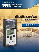 英思科GBpro单一气体检测