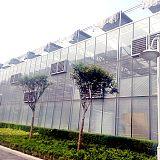 设计安装连栋玻璃温室大棚 智能连体玻璃大棚建设
