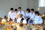 畜禽生產與疾病防治
