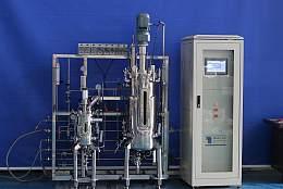 實驗室發酵罐