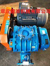 污水处理专用山东隆祥罗茨鼓风机,罗茨增压泵。;