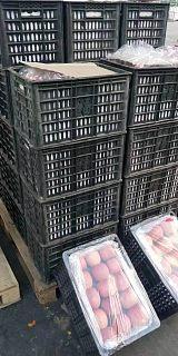 东莞红富士苹果批发市场