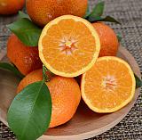 广东砂糖橘水果批发市场