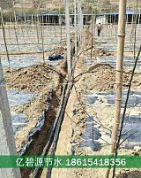 威海山上pe滴灌干管安裝施工方案