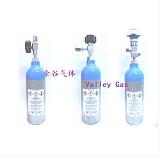 标准气体;