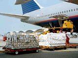 北京到牡丹江空運托運塑膠手套