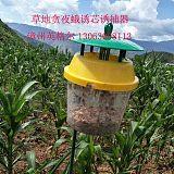 草地貪夜蛾病蟲害生物防治 高效無毒 害蟲引誘劑 誘捕器