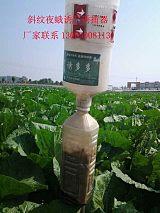 農業害蟲誘捕器 塑料捕蟲器 昆蟲性誘捕 害蟲生物防治